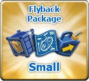 SmallPackage.png